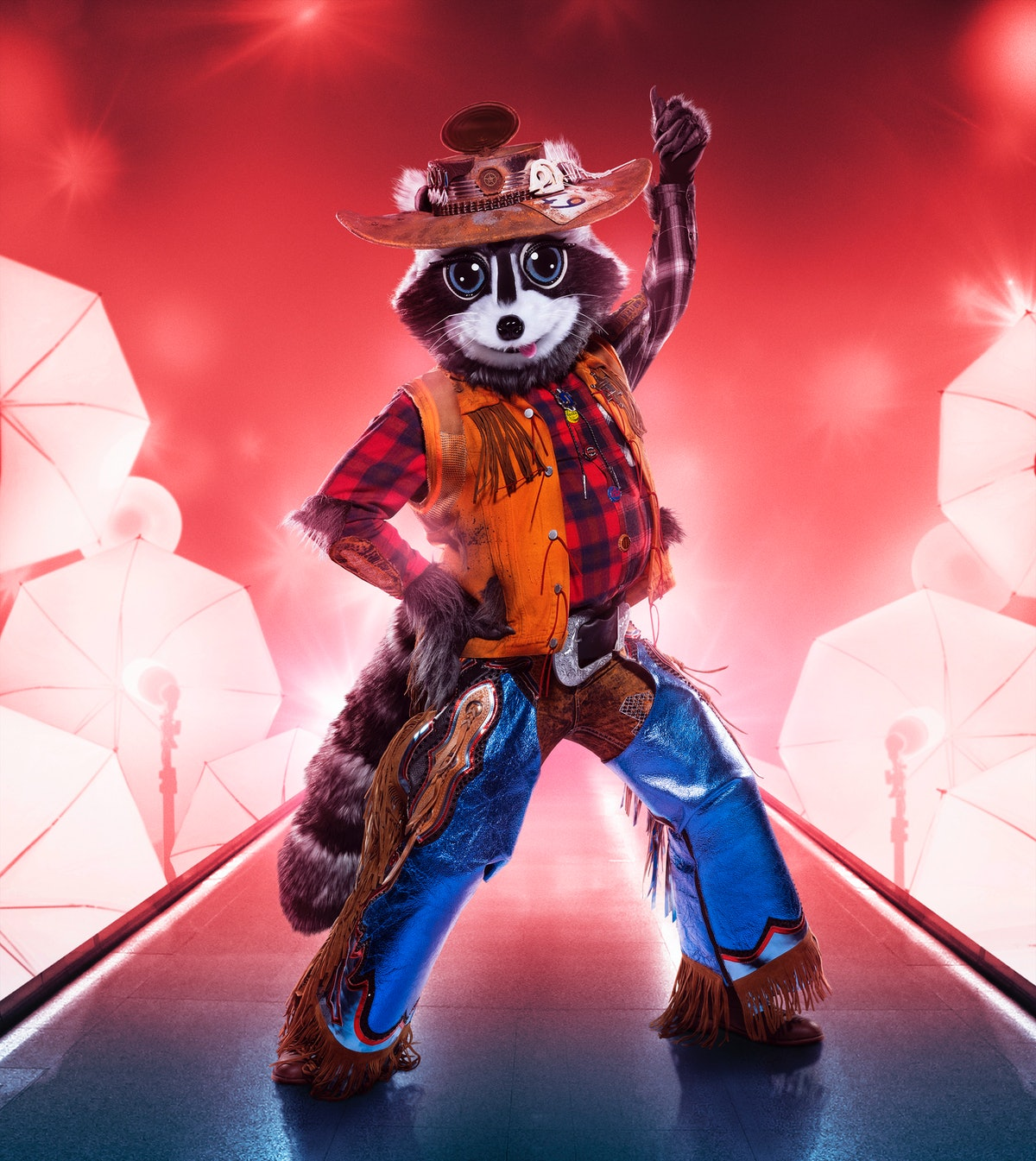 Raccoon on The Masked Singer