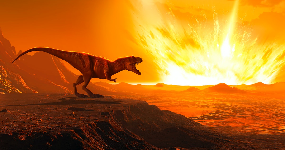 The asteroid that killed dinosaurs caused the birth of something great