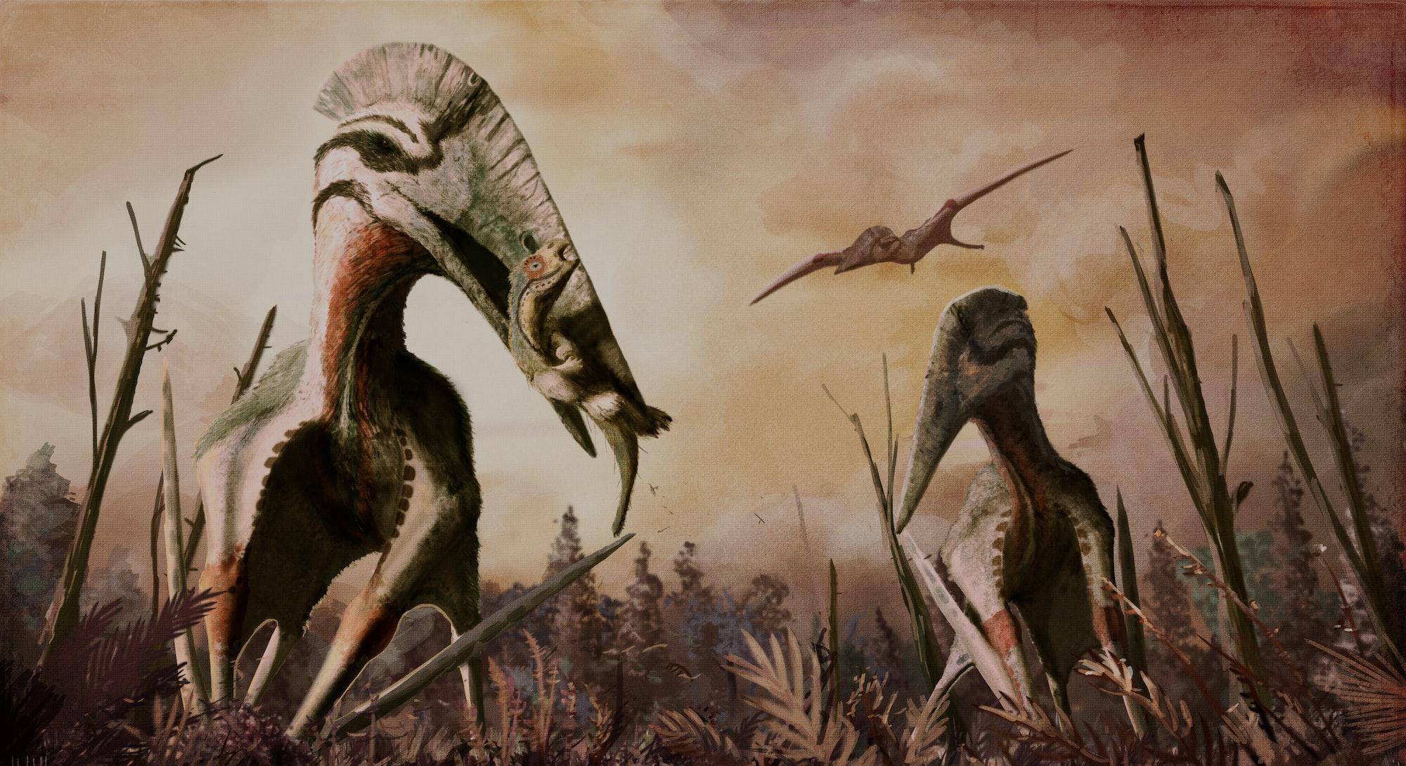 Maastrichtian, Transylvanian giant azhdarchid pterosaur Hatzegopteryx sp. preys on the rhabdodontid iguanodontian Zalmoxes