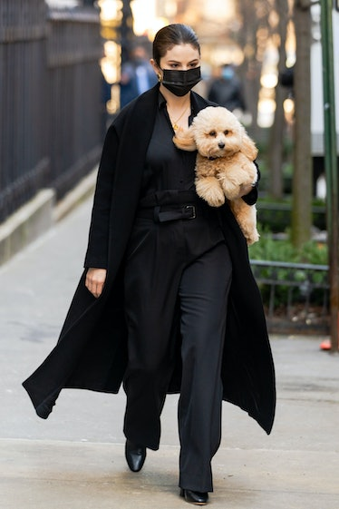 Selena Gomez carrying a dog