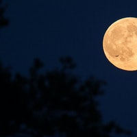 Pink Moon: You need to see the first supermoon of 2021