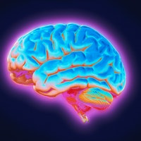 What fasting does to the brain: Four ways it may help brain health