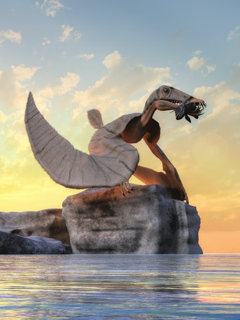 This 3D rendering shows a Dorygnathus, an extinct pterosaur that flew in the Jurassic-era skies. It had sharp teeth that it used to seize fish. Here a grey one sits on a rock by the water with its lunch.