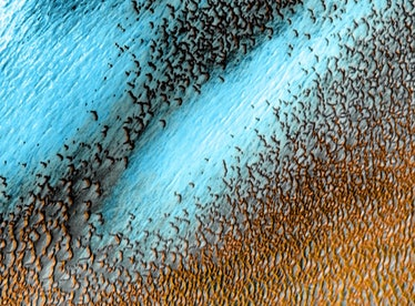 Tweets about NASA's photo of blue dunes on Mars show people are in awe of the shot.