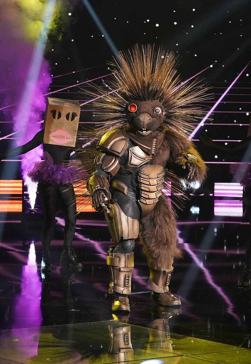 Robopine performing on 'Masked Singer' via FOX press site.