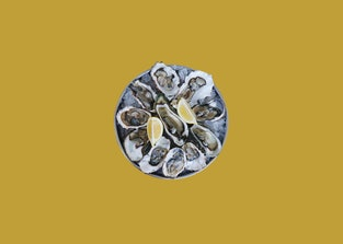 Raw oyster plate with two lemons on a yellow background