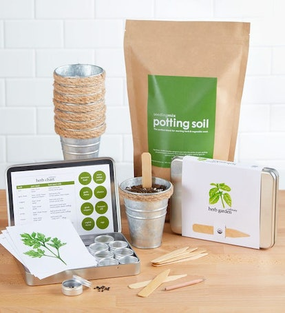 Herb Garden Grow Kit