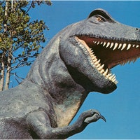 How many T. rexes ever lived? If you think a billion, go higher