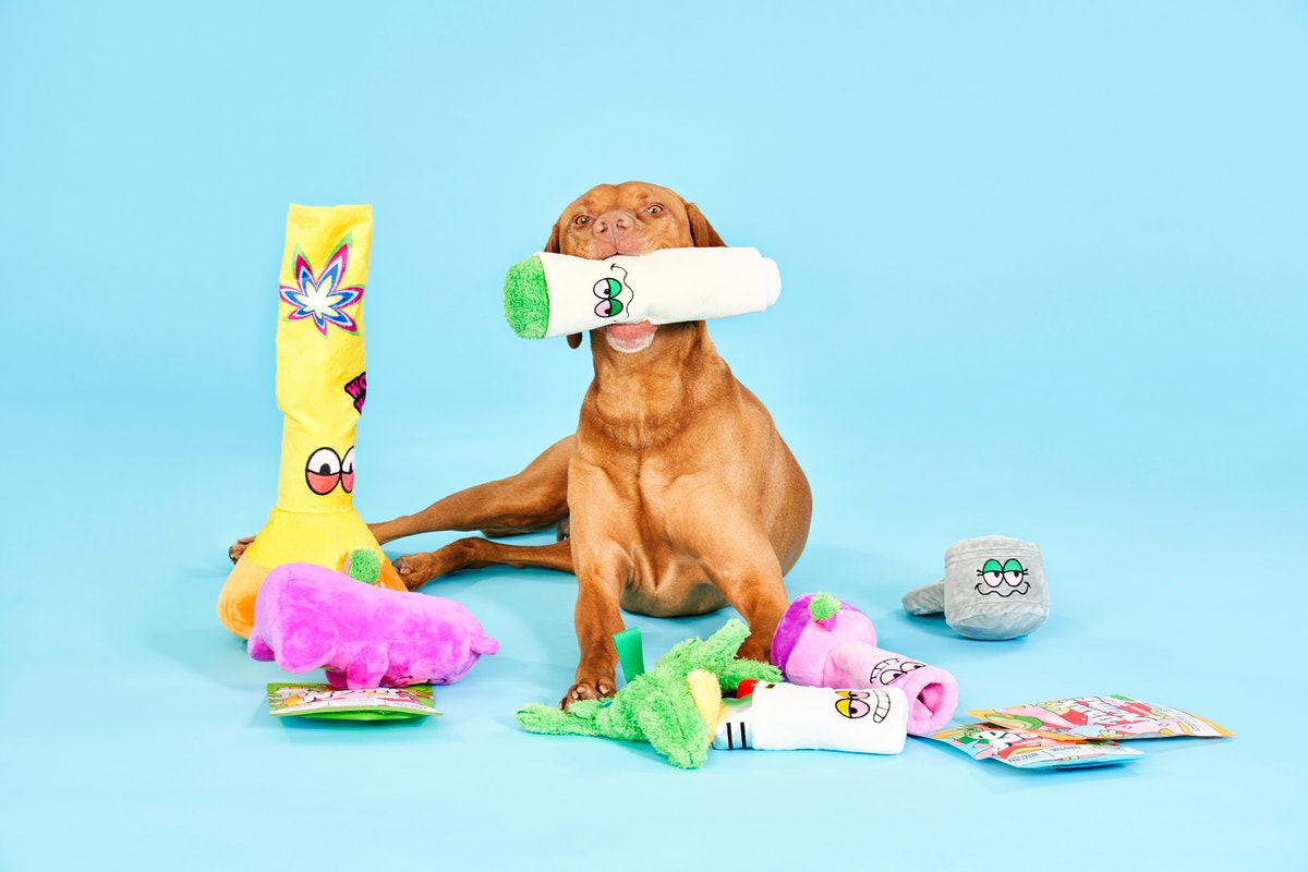 This Bud Hounds BarkBox for April 2021 is filled with weed-themed dog toys.