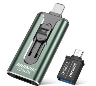AUAMOZ Memory Flash Drive (256 GB)