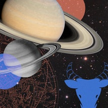 How Taurus Season 2021 Will Affect Your Zodiac Sign