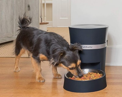 PetSafe Smart Feed Automatic Pet Feeder for Cats and Dogs