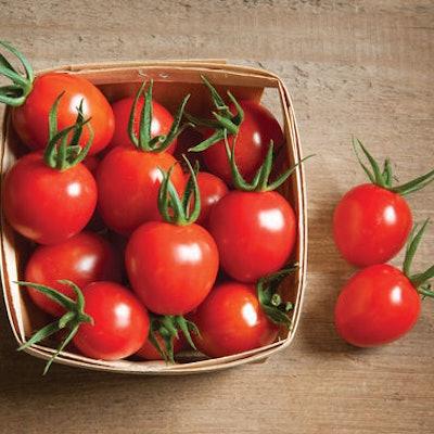 Cherry Bomb Organic Tomatoes