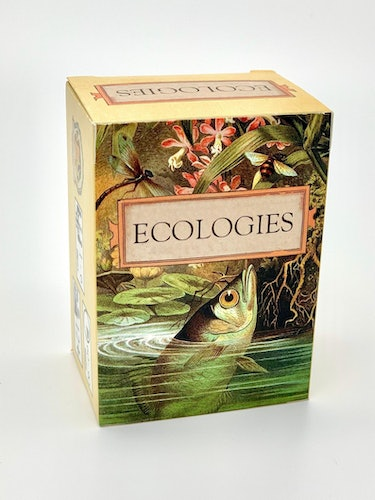 Board game design for Ecologies