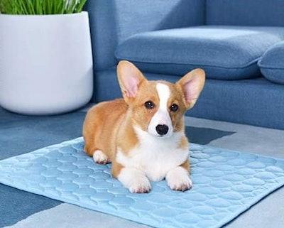 BESAZW Cooling Mat Pet Bed
