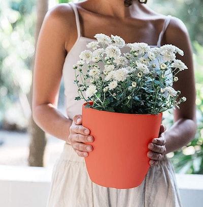Gardenix Decor Self-Watering Planter