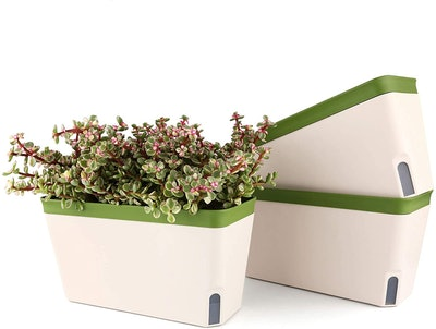 T4U Self Watering Planter (Set of 3)