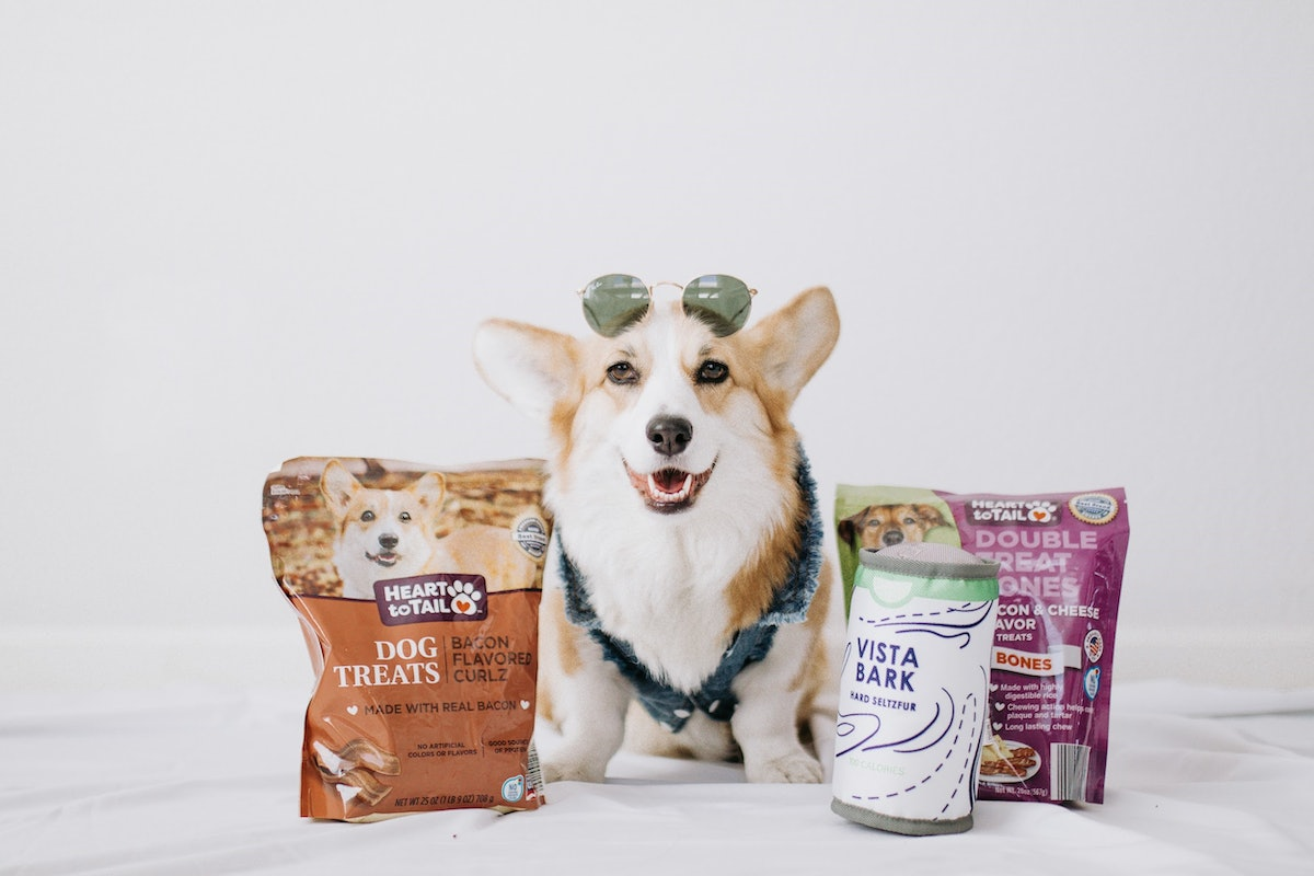 Here's how to enter Aldi's Calling All Paws pet contest for a chance to win a year of pet food and an ad.