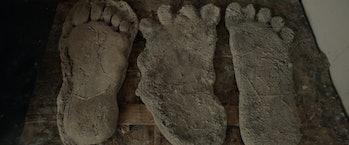Alleged Bigfoot footprints.