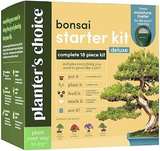 Planter's Choice Bonsai Tree Growing Kit