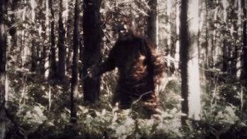 A Sasquatch sighting?