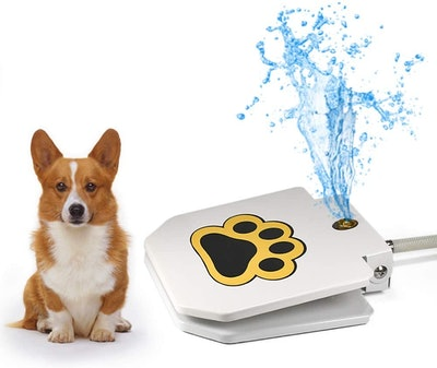 Videosystem Dog Fountain Sprinkler
