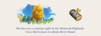 Birch Woord Genshin Impact Farming Location