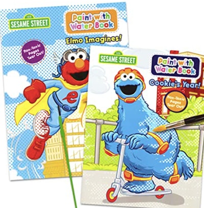 Sesame Street Paint With Water Books