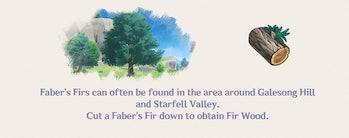 Fir Wood Genshin Impact Farming Location