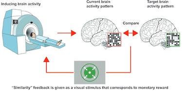 decoded neurfeedback for ptsd brain scan machine learning