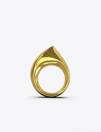 Ark Ring