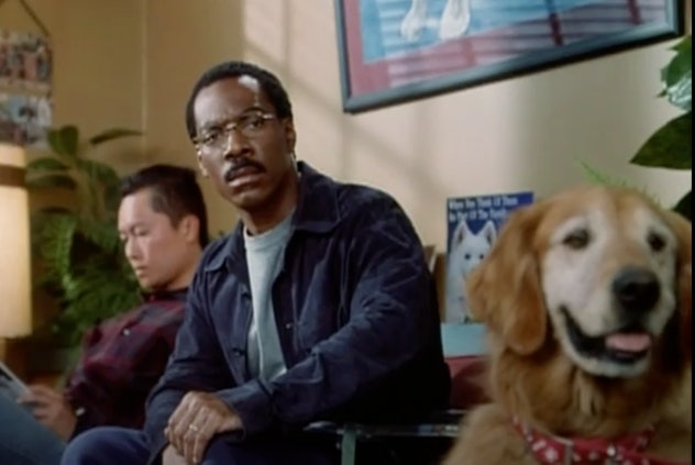 Eddie Murphy stars in Dr. Doolittle as a man with the ability to talk to animals.