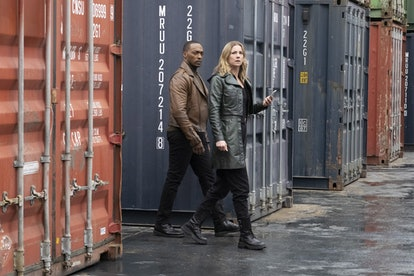 Sam and Sharon Carter in 'Falcon and the Winter Soldier' via Disney+ press site.