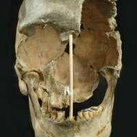 Sex between humans and Neanderthals was way more common than realized
