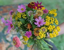 A bouquet of pink and yellow wildflowers.