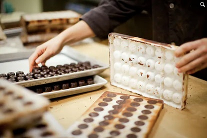 High-end chocolate-makers are choosy about their beans.