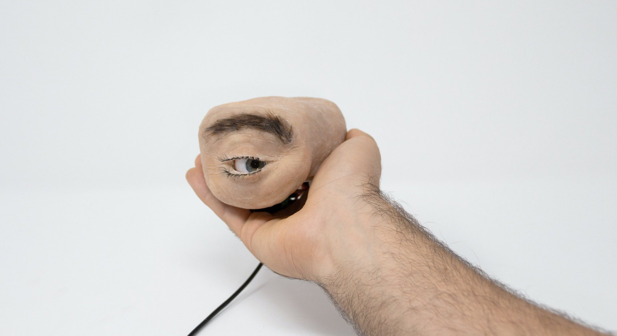A close-up view of the Eyecam