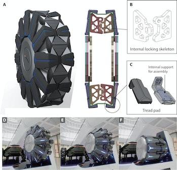wheel transformation scientific diagram