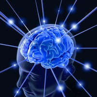 Male brains show a chaotic aging process compared to females