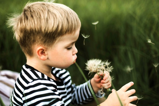 toddler blowing dandelion petals