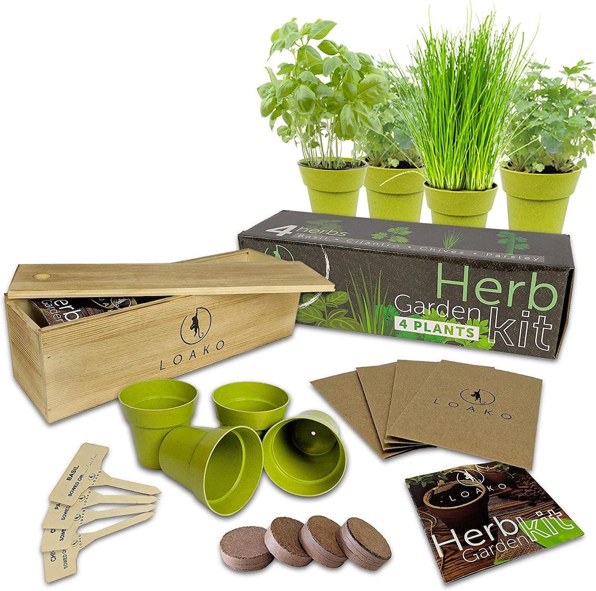 Loako Indoor Herb Garden Starter Kit
