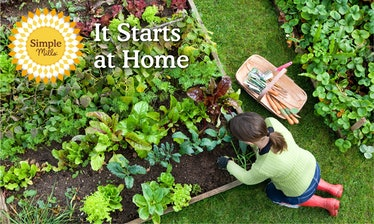 Simple Mills' It Starts At Home giveaway will gift 10 people $1,000 towards Gardeners.com.