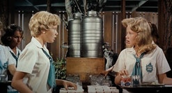a still from the parent trap movie, hayley mills
