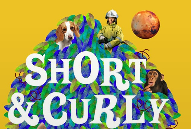 'Short & Curly' is a great ethics-based podcasts for tweens.