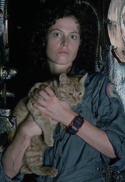 sigourney weaver as ellen ripley holding cat in alien