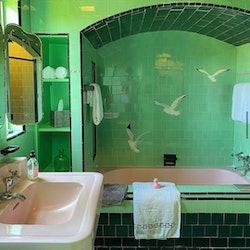 Green bathtub