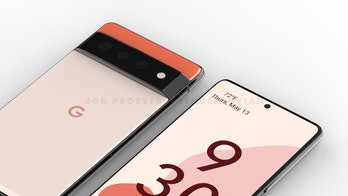 Pixel 6 and Pixel 6 Pro leaked images