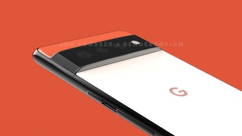 Pixel 6 leaked images