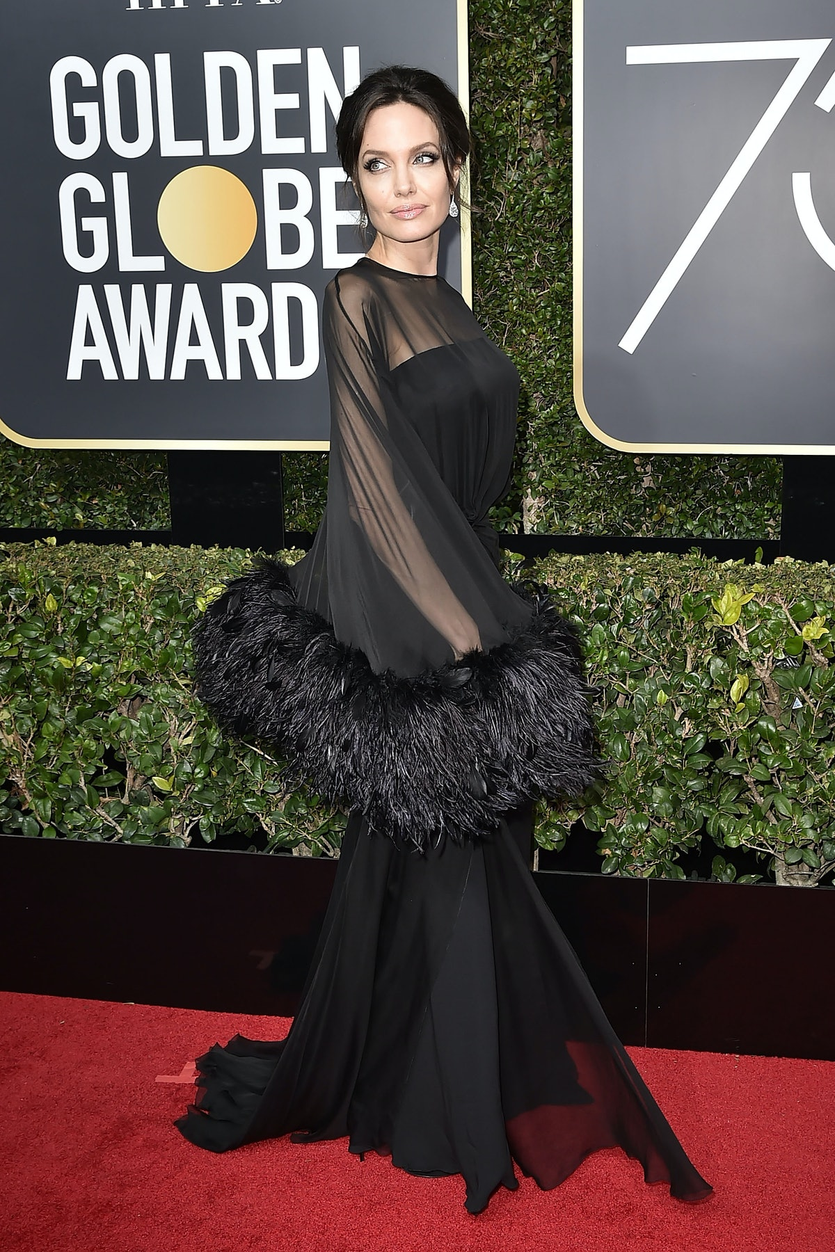 Angelina Jolie in feathered sleeves.