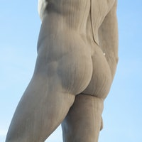 """Why butts are the """"Trojan horse"""" way to get healthy"""
